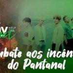 Fanbase brasileira do BTS levanta doações para ajudar o Pantanal