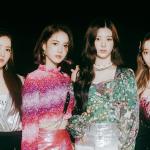 Debuts de k-pop que você (talvez) perdeu: conheça o girlgroup STAYC