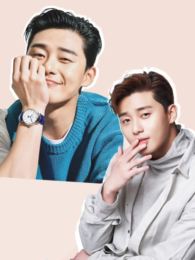 5 K-Dramas com Park Seo Joon
